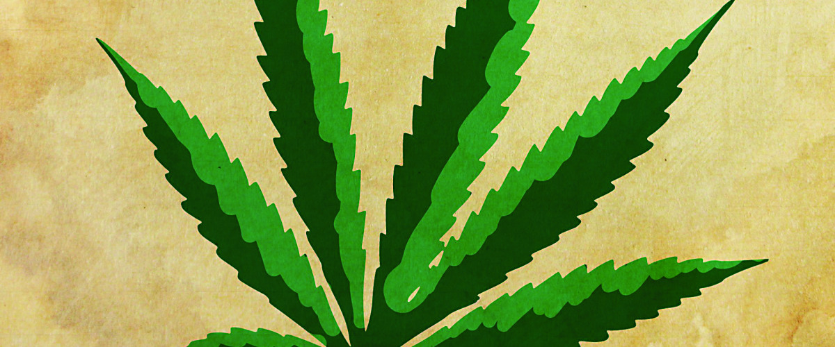 Marijuana Tax Revenue Gets Sky High in CO, Could LA Be Next?