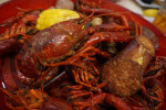 Don's Seafood Serves Up Monster Crawfish