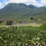 Limin on Nevis: The Island Less Travelled