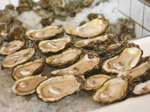 Bar Rooms & Bivalves: Oyster Season and the Neighborhood Bar in New Orleans