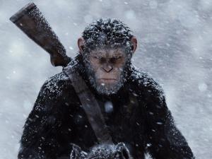 Film Review: <em>War for the Planet of the Apes</em>