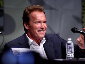 Schwarzenegger and Hamilton to Return for Terminator Reboot