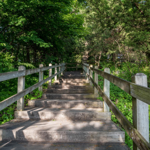 Clark's Creek Nature Trail: The Perfect Outdoor Getaway