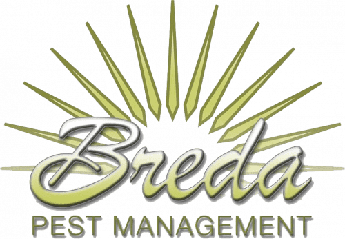 Breda Pest Management logo