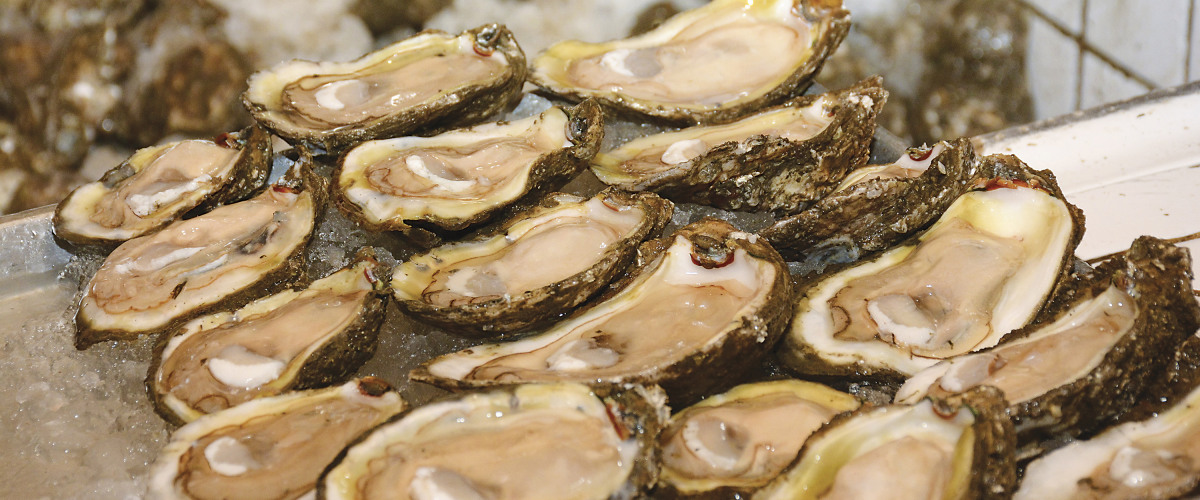 Gearing Up For National Oyster Day on August 5