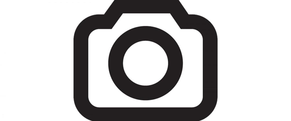 Brian Wilson Brings Nostalgia to the Saenger