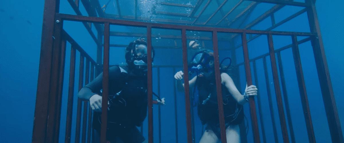 Film Review: 47 Meters Down