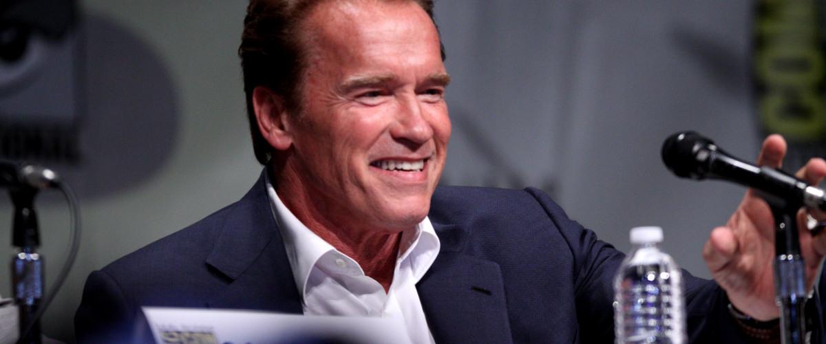 Schwarzenegger and Hamilton to Return for Terminator Reboot