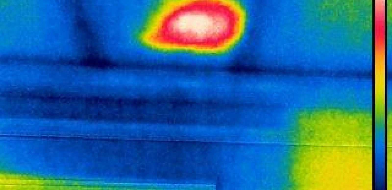 Watch how we use Infrared for Pest Detection