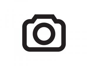 Little Freddie King Has The Blues