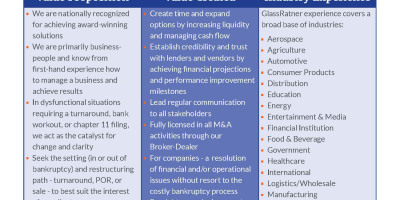 Financial Advisor to the Debtor and Company Tearsheet