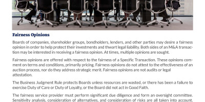 Fairness  Solvency Opinions