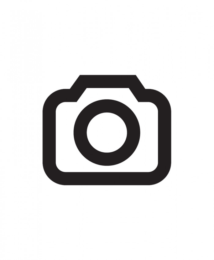 Motion Detector Features