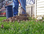 Renovating Your Yard and Home for Cooler Weather