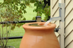 Rain for Your Yard: How to Be Ready